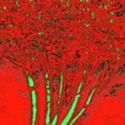 Jelks Fingerling 9 Art Print