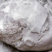 Jericho: Human Skull Art Print