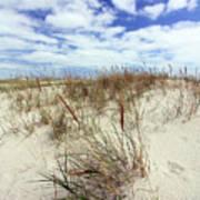 Jersey Dune I Art Print