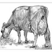 Jersey Milking Cow Art Print