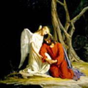 Jesus In Gethsemane Art Print