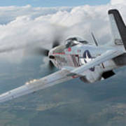 Jet Hunting Art Print