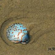 Jewel On The Beach Art Print