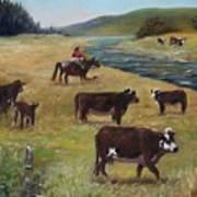 Jim's Cattle Art Print