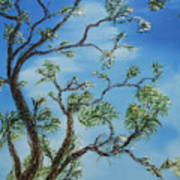 Jim's Tree Art Print