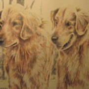 Joe's Dogs Art Print