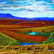 Jordan Vineyard Art Print