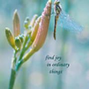 Joy In Ordinary Things Art Print