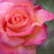 Judys Rose Art Print