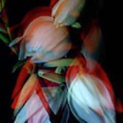Jukka Flowers Art Print