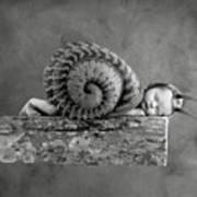 Julia Snail Art Print by Anne Geddes