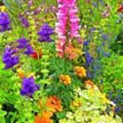 Juneau Has Flowers Art Print