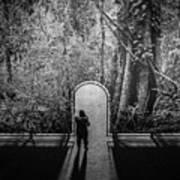 Jungle Entrance Art Print