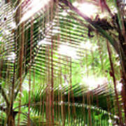 Jungle In There Art Print