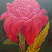 Jungle Queen Torch Ginger Art Print