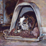 Junkyard Dog Print by Harvie Brown