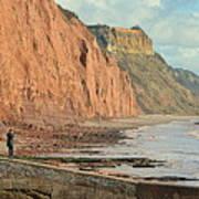 Jurassic Cliffs Art Print