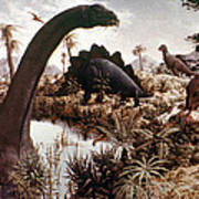 Jurassic Swamp Art Print
