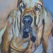 Just Another Magic Bloodhound Art Print