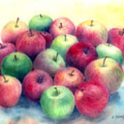 Just Apples Art Print