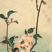 Kaido Ni Shokin II - Small Bird On A Blossoming Branch II Art Print