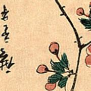 Kaido Ni Shokin IIi - Small Bird On A Branch Of Kaidozakura IIi Art Print