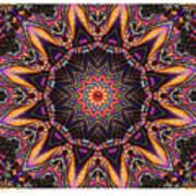 kaleido Perf10 9cAvi 44 Art Print