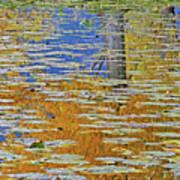 Kaloya Pond Autumn Art Print