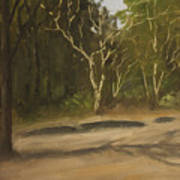 Kanha Forest Trail Art Print