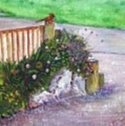 Kates Garden Art Print