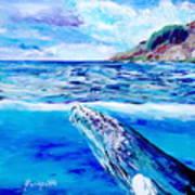 Kauai Humpback Whale Art Print