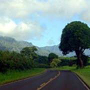 Kauai Road Art Print