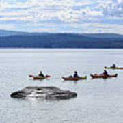 Kayakers Paddle To Fishing Cone On Yellowstone Lake Art Print