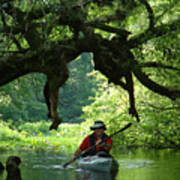 Kayaking In Dismal Swamp Art Print
