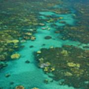 Kayaking Through Beautiful Coral Art Print