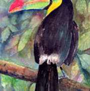 Keel-billed Toucan Art Print