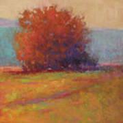 Keene Valley Field Art Print