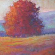 Keene Valley Art Print