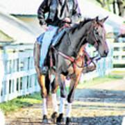 Keeneland Pony Boy Print by Tom Schmidt