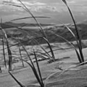 Kelso Dunes Art Print
