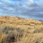 Kelso Dunes Wilderness Art Print