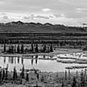 Kettle Pond And The Alaska Range Art Print