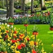 Keukenhof Ornamental Garden. Art Print