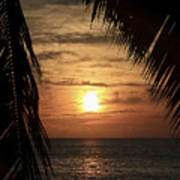 Key West Palm Sunset 2 Art Print