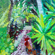 Key West Rooster Art Print