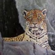 Khensu,  Jaguar Art Print