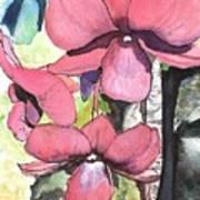 Kiahuna Orchids Art Print