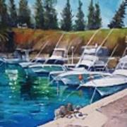Kiama Harbour Art Print