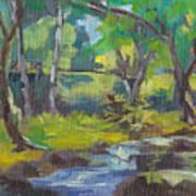Kilauea Stream Art Print