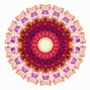 Kindness Mandala Art By Sharon Cummings Art Print